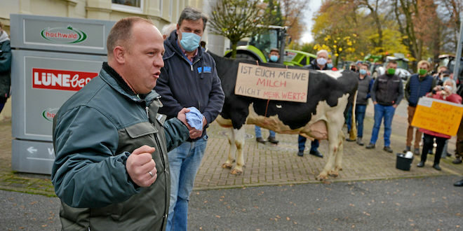 Trecker-Demo in Lüneburg